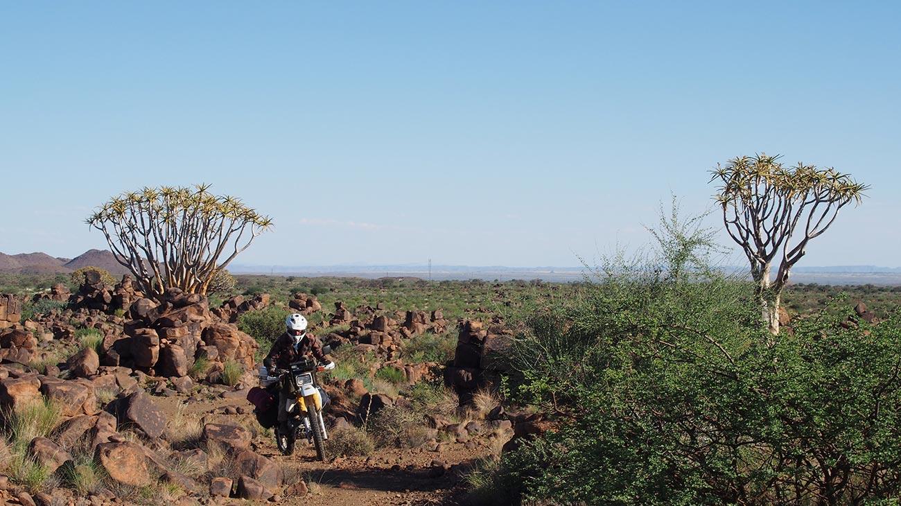 film_mzungu_rides01